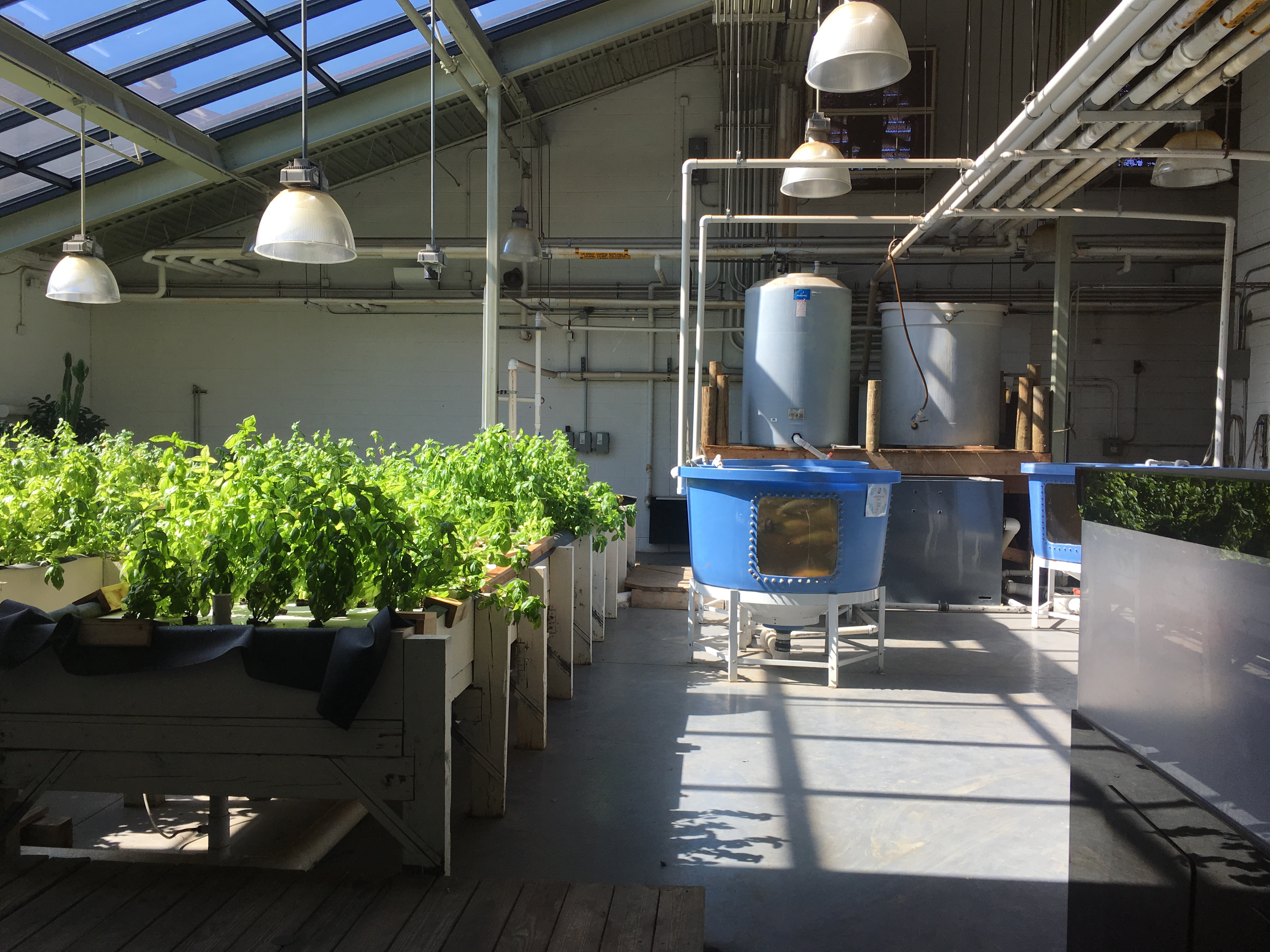 Chicago High School for Agricultural Sciences